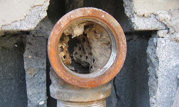 oil tank vent clogged by wasp nests